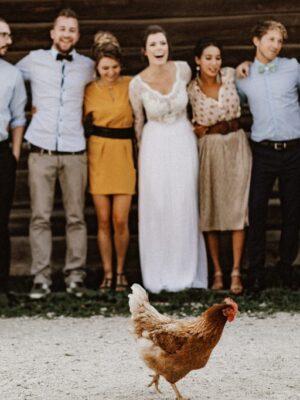 csirkeee